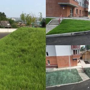 Зелёные кварталы